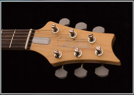 prs john mayer Bluesky_head_0712.jpg