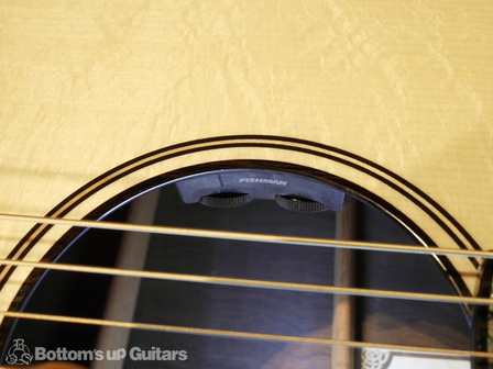 PRS_PS6574_Acoustic_TonareGrand_CTRL.jpg