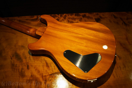 PaulsGuitar_13_BZF_Copper_Back.jpg