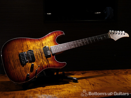 TsGuitars_DST22DX_Roastedmaple_TESB_all.jpg