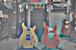 Custom22 Custom24 Paul Reed Smith