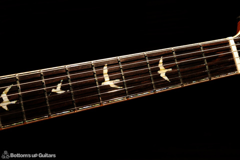 PRS_PS7228_HB2McCarty594LTD_LGS_C_FBbird1.jpg